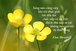 Mỗi ngày là một món quà - Quà tặng cuộc sống Việt Nam