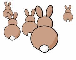 bầy thỏ