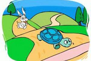Truyện Rùa và Thỏ - Truyện ngụ ngôn đặc sắc nhất cho bé